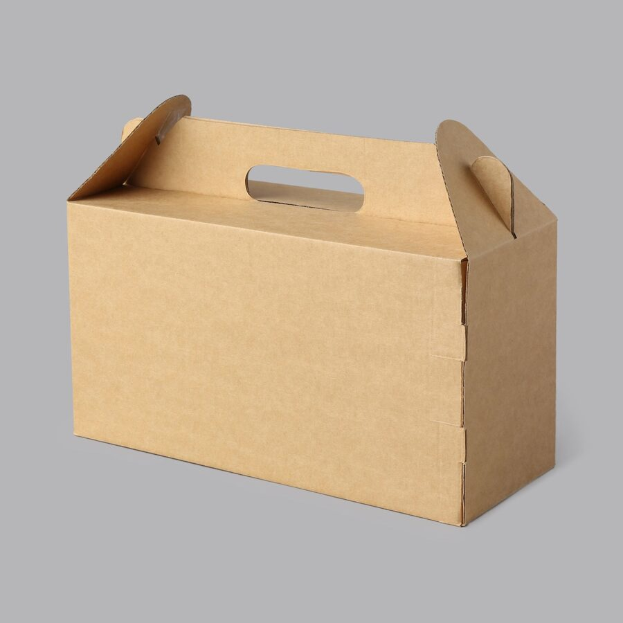Kartona kaste ar rokturi 215x100x110mm /ZSK49/